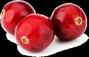 Cranberries_trn