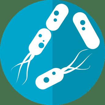 bacteria-icon-2316230_1280